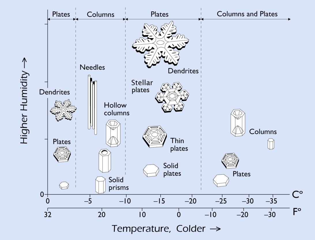 http://www.snowcrystals.com/morphology/SnowflakeMorphology2med.jpg