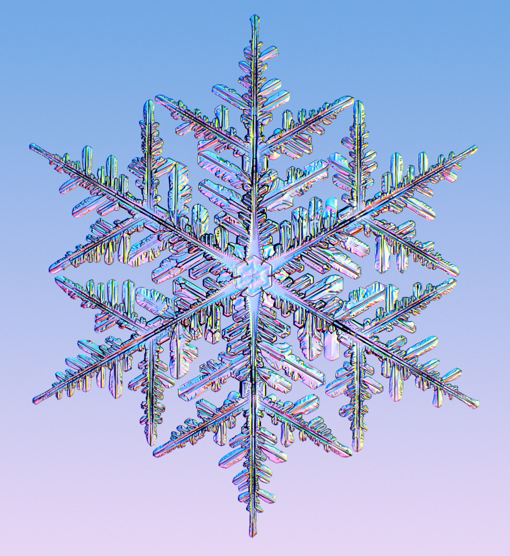 Image result for image of snowflakes
