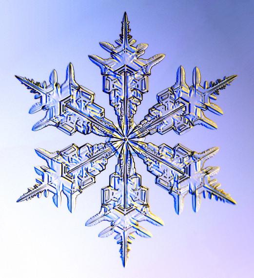 Snowflake Stamps - SnowCrystals.com